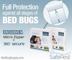 Rubbing Alcohol Kills Bed Bugs Alcohol Is A Very Flammable Contact Killer For Bed Bugs