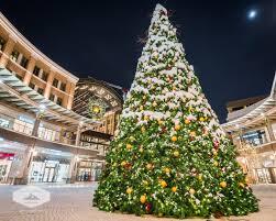 winter begins u0026 the holidays james udall