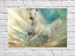 Animal Home Decor by 2017 Lovely Pony Wall Art Beauty Funny Animal Home Decor Modern