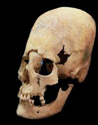 the mystery of elongated skulls found in germany could
