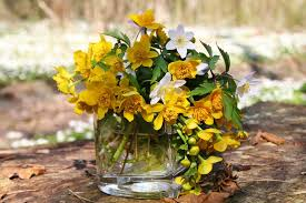 flower still vase life yellow white forest flowers vater glass