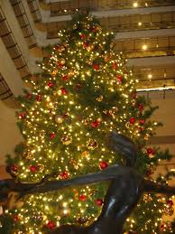 panoramio photo of beautiful christmas tree at the jw marriott