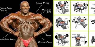 decline bench press muscles best chest exercises for developing full muscular pecs fitness