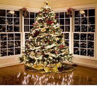 lights christmas christmas lights novelty lights
