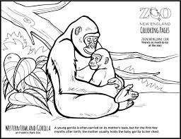 coloring page of gorilla color a gorilla