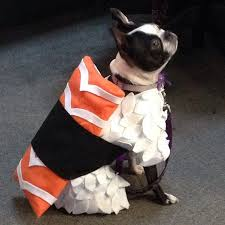Sushi Costume Halloween 12 Cute Doggy Costumes Images Animal Costumes