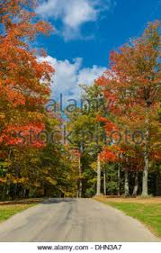 road colorful fall trees chestnut ridge park western