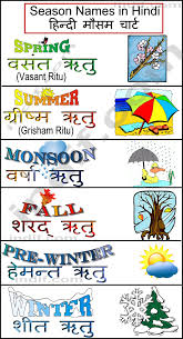 flowers name in hindi or english the best flowers ideas