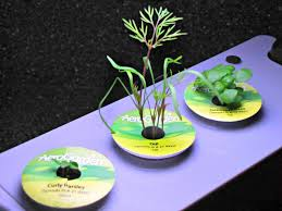 Aerogarden by How Does Your Aero Garden Grow Frugal Upstate