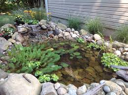 build your own outdoor natural pond