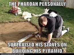Building Memes - the pharoah lolcats lol cat memes funny cats funny cat