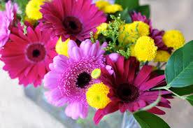 flowers in november flower arrangement november 7 2010 moisie darling
