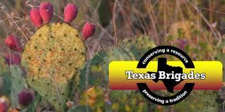 Uncategorized Uncategorized Archives Texas Brigades