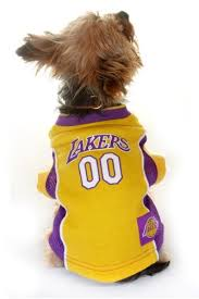 amazon com los angeles lakers dog jersey all sizes