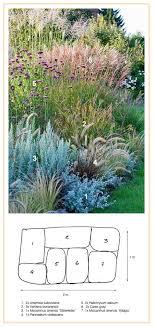 best 25 ornamental grasses ideas on grass