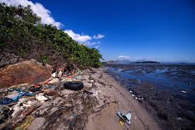 Rio Olympic Venues Now Us Olympians Talk About Contaminated Rio Olympic Venues Business