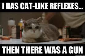 Boondocks Memes - boondocks saint cat memes quickmeme