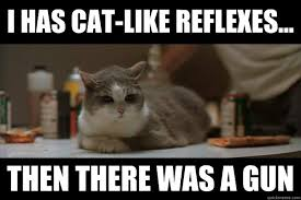 Boondocks Memes - i has cat like reflexes then there was a gun boondocks saint