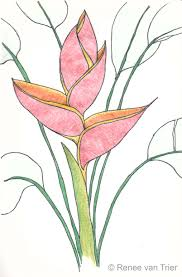 flower e2 80 93 page 20 pencil art drawing drawings for coloring