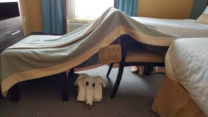what is the best blanket fort you can build right now with pics