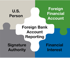 tax attorney employment tax fraud 2 years verni tax law