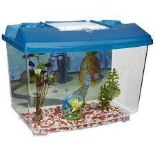 penn plax spongebob square tank aquarium kit five gallon fish tanks