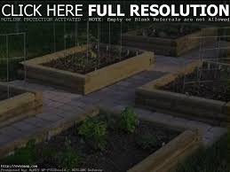 raised vegetable garden beds youtube home outdoor decoration