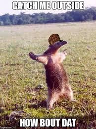 Meme Fight - fight me anteater memes imgflip