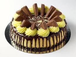 cheesecake tim tam 9
