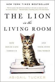 livingroom world the in the living room how house cats tamed us and took
