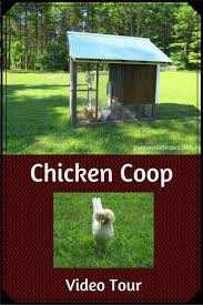 backyard chicken coops customer portal home outdoor decoration
