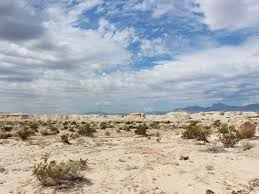 Tule Springs Fossil Beds National Monument Discover A Fossil Jackpot Off The Las Vegas Strip Science