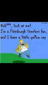 Anti Steelers Memes - 82 best steelers suck images on pinterest cincinnati bengals