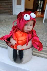 lobster costume the cutest baby lobster costume