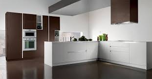 kitchen cabinets fort lauderdale home