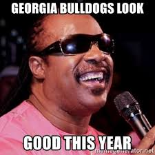 georgia bulldogs look good this year stevie wonder meme generator
