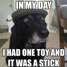 Weekend Dog Meme - it s the weekend time for some lighter stuff the widdershins