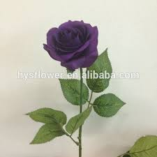purple roses for sale like purple roses wedding venus roses bridal bouquet roses