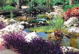 Largo Botanical Garden Heritage House And Botanical Gardens In Largo Fl Vacationmaybe