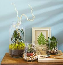 indoor planting 4 ideas for stylish indoor plant displays midwest living