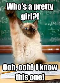 Pretty Girl Meme - who s a pretty girl ooh ooh i know this one student cat