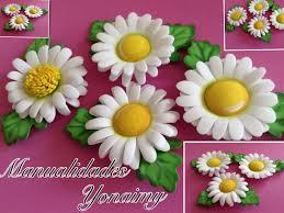 flores de foamy cristina pazmiño google