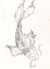 again koi fish tattoo drawing photos pictures and sketches