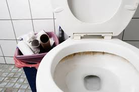Why Do I Go To The Bathroom So Much How Often Should I And Other Toilet Topics Wellness Us News