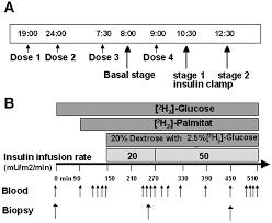 inhibition of lipolysis stimulates peripheral glucose uptake but