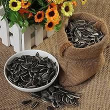 gmo sunflower seeds oil seeds gmo sunflower seeds oil seeds