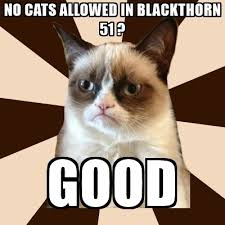 Meme Generator Grumpy Cat - tard the grumpy cat meme generator best cat wallpaper 2018