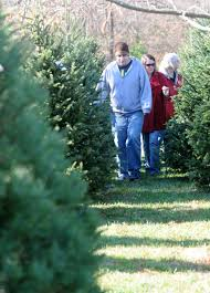 where to buy fresh cut trees in butler and warren