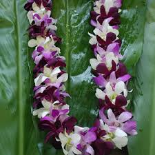 Graduation Leis Fresh Graduation Leis