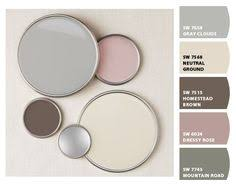 ash pink transient shades of gray in combination with dark brown